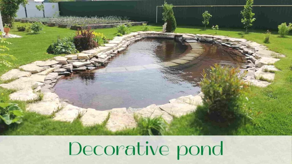 image-decorative-pond