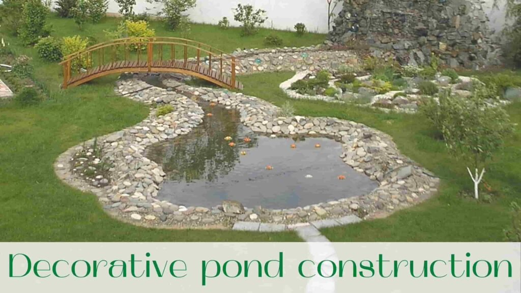 image-decorative-pond-construction