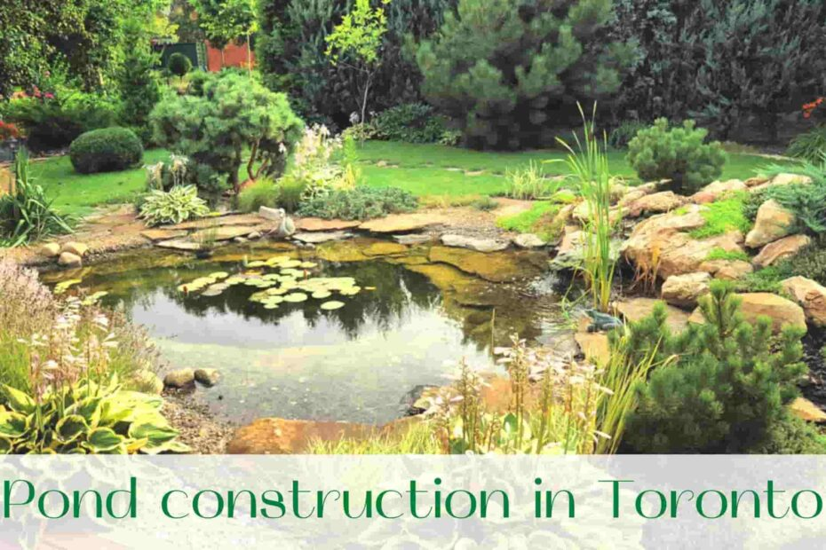 image-pond-construction-in-toronto