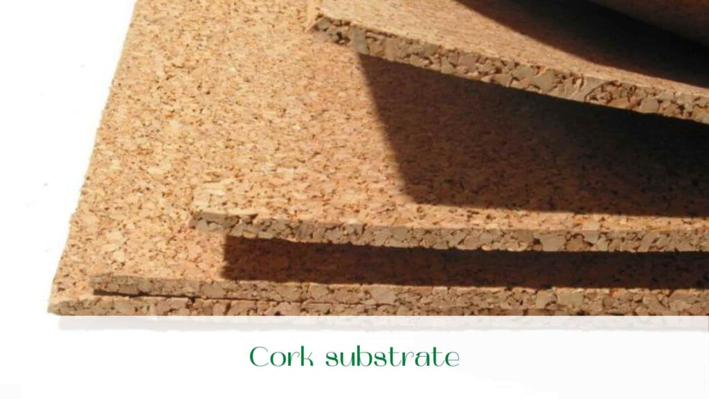 image-Cork-substrate